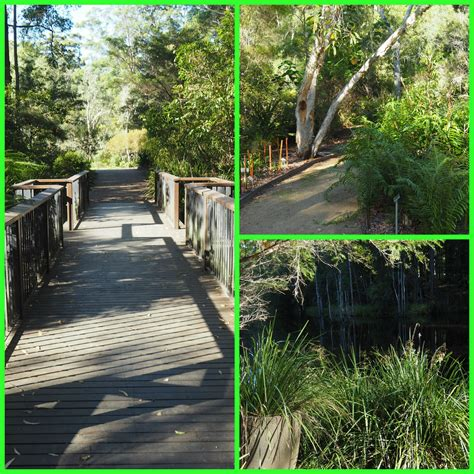 Maroochy Botanic Garden Sunshine Coast Maroochy Botanic Gardens