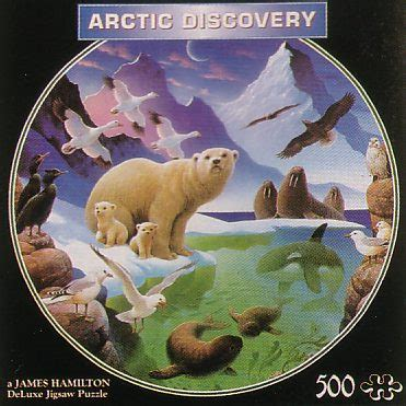 themes by james arctic james hamilton ad2 arctic discovery r hersey