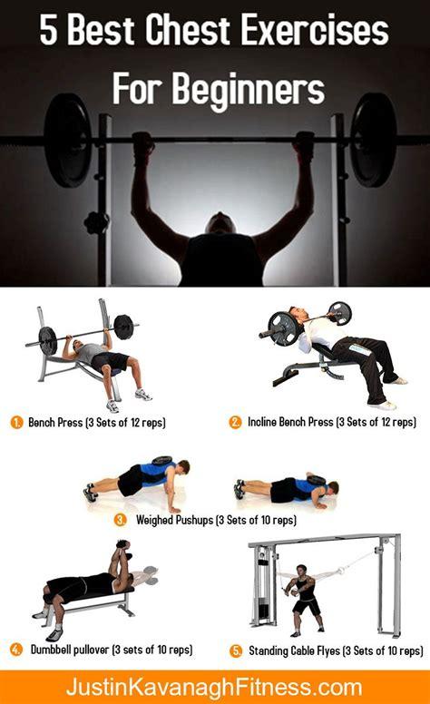 the 15 best chest exercises 235 best build lean muscle images on pinterest