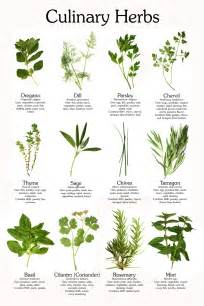 Herb Growing Chart by Herb