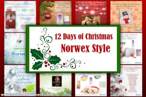12 Days Of Decorations Uk by Norwex Movement