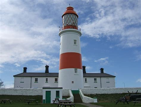 House Plant by Souter Lighthouse