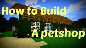 How To Build A Shop Minecraft How To Build A Pet Shop For Real Youtube