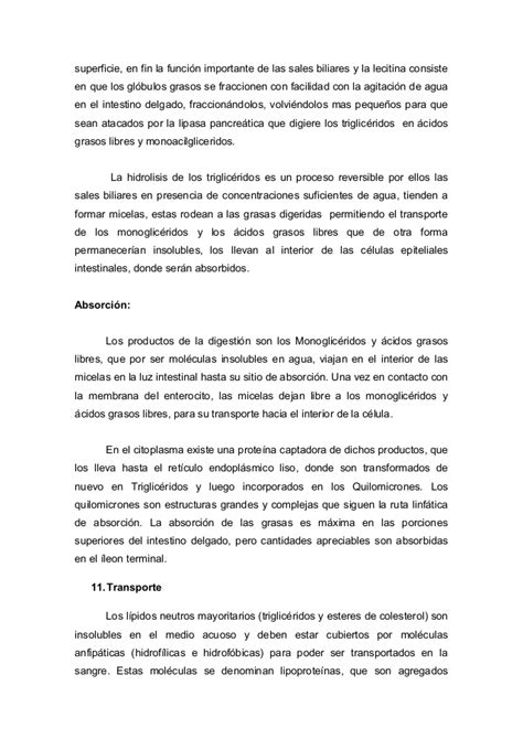 Resignation Letter Nut Nutricion Normal 1 Lipidos