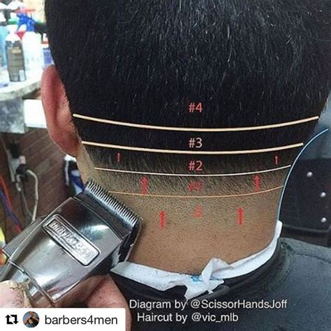 haircut diagram 17 best images about haircuts step by step on