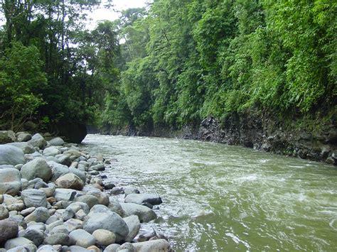 cascadas con 225 rboles imagui imagenes de bosques rios bosques rio toro ecos del bosque