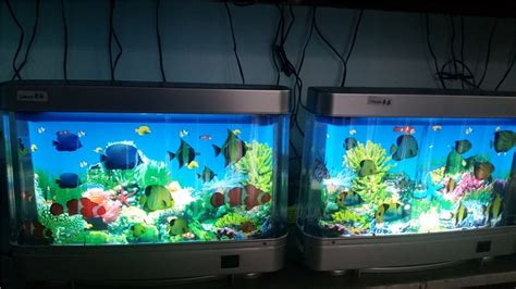 Aquarium Gel Ternak Semut Illuminated led lighted fish aquarium with illusion of swimming fish buy fish aquarium