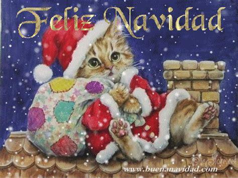 imagenes navidad gatitos gifs gatos navidad