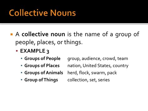 collective biography definition noun exles in sentences driverlayer search engine