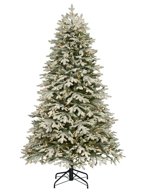 frosted fraser fir christmas tree balsam hill australia