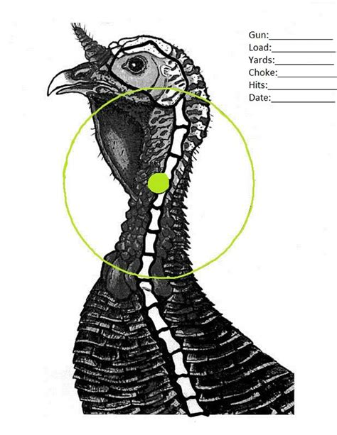 printable wild turkey targets all you need to know about thanksgiving