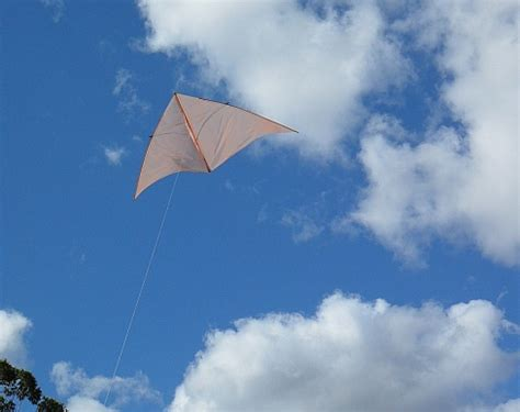 Handmade Kites - a kite is to fly if you follow these tips