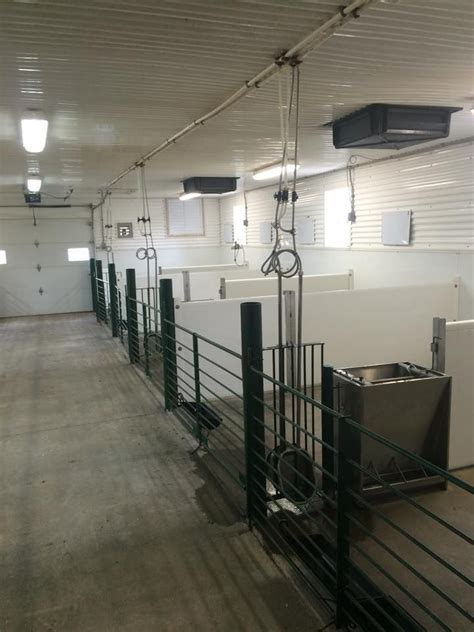 cattle cool room albrights in michigan put fresh air vents in the ceiling of their show barn note the exhaust