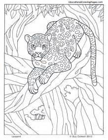 jungle animal pictures print az coloring pages