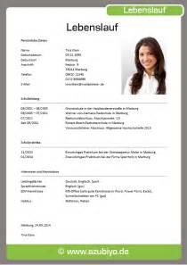 download formular cv europass 2 - Helena Frst Lebenslauf
