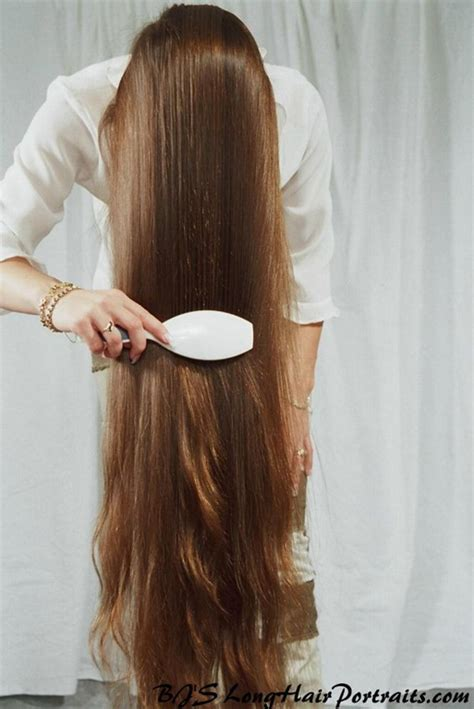do yorkies have thick hair or then hair ulomak iz priče quot kosa quot kućanica u japanu blog hr