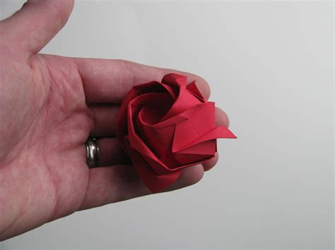 Folded Paper Roses - stephen s origami origami flowers
