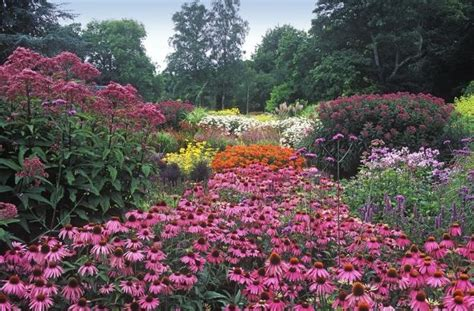 High Summer Schlepping 13 best gardens a schlep from dc images on