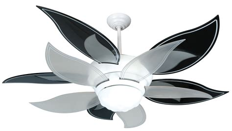 black and white ceiling fans lighting and ceiling fans