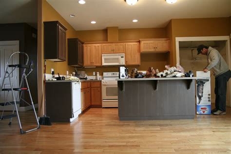 What Color Should I Paint My Kitchen Cabinets All About What Color Should I Paint My Kitchen With White Cabinets