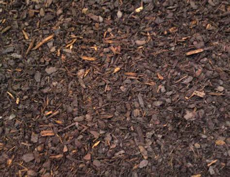Decorative Bark by Decorative Fines Bark Soil Top Dressing Bark