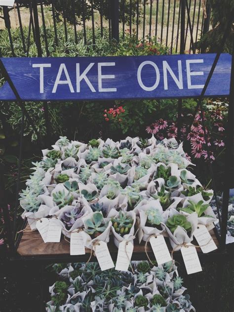 17 best images about garden wedding ideas on wedding favors and mint to be
