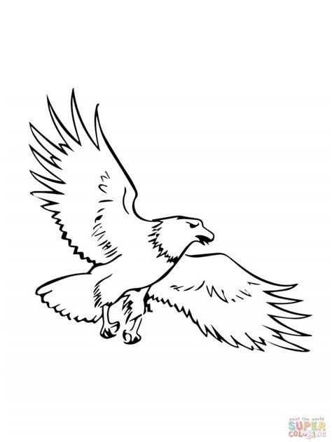 coloring page golden eagle golden eagle coloring page az coloring pages