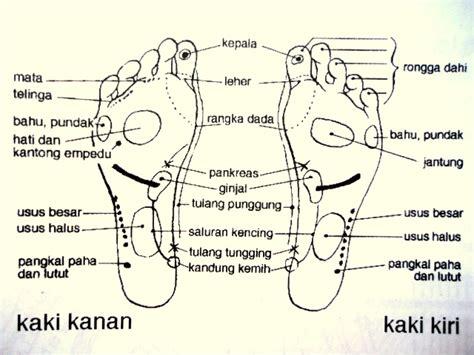 bioelektrik adalah a macam lantai dan efeknya terhadap kaki dan kesehatan
