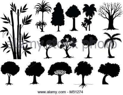 different types of trees stock vector art 635949946 istock different types of trees illustration stock vector art
