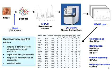 proteomics workflow proteomics pictures to pin on pinsdaddy