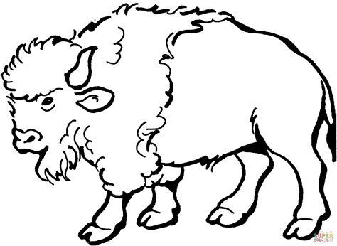 ausmalbild bison ausmalbilder kostenlos zum ausdrucken