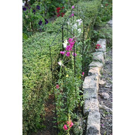 Support Plante Grimpante Bambou by Support Treillis Et Tuteur Plante Grimpante Jardin Et