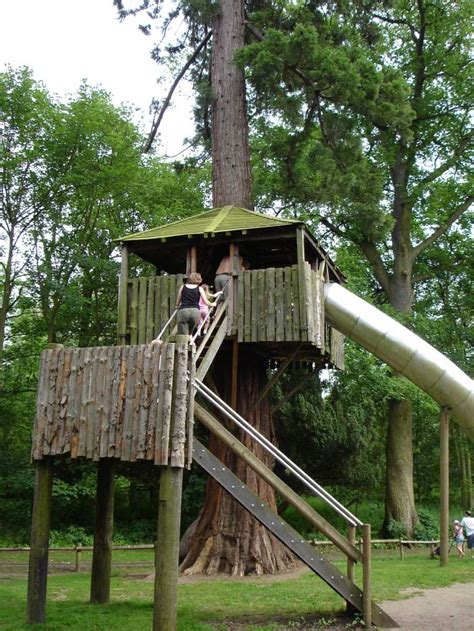 treehouse house tree house design ideas for modern family