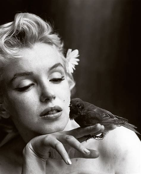 love norma jeane marilyn monroe photographed by cecil
