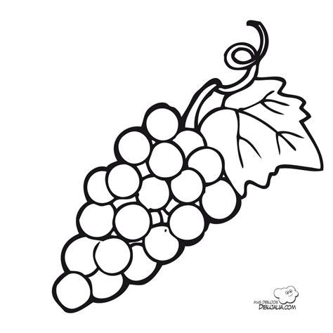 imagenes de uvas para colorear e imprimir racimo rica uva dibujalia dibujos para colorear