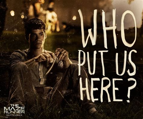 maze runner film quiz the maze runner so many questions so many unaswered