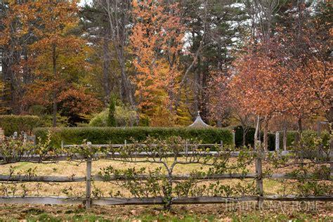 autumn garden beautiful autumn garden traditional home