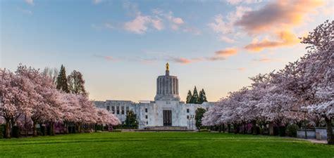 Public Insurance Adjusters in Salem, Oregon