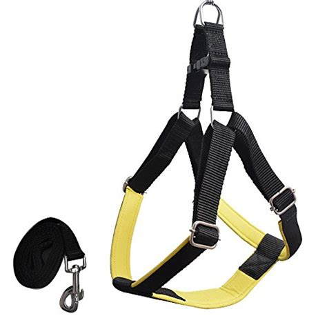 rs for dogs pawzone durable adjustable yellow harness with leash for dogs 1 inch 650 rs