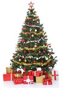 ein weihnachtsbaum f 252 r chorweiler stadt k 246 ln