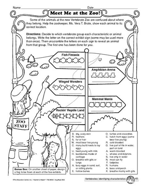 vertebrates identifying characteristics worksheet