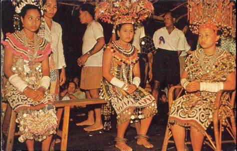 details about dayak girl photo costume jewels borneo malaysia borneo sarawak dayak native girls costumes ebay