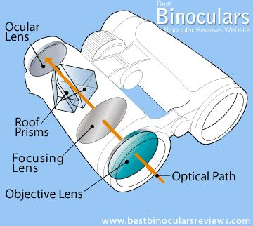 cheap binoculars is a roof or porro prism best best