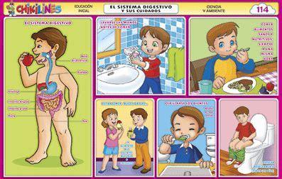 114 el sistema digestivo y sus cuidados gif 397 215 252 sergio
