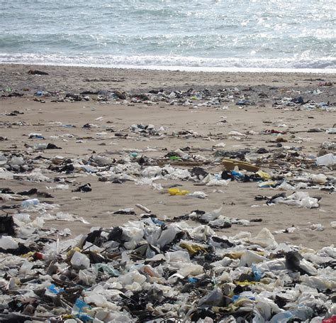 penale di arriva il reato ambientale cleaning community