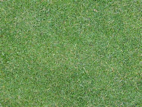 image after textures tabus grass floor ground blades