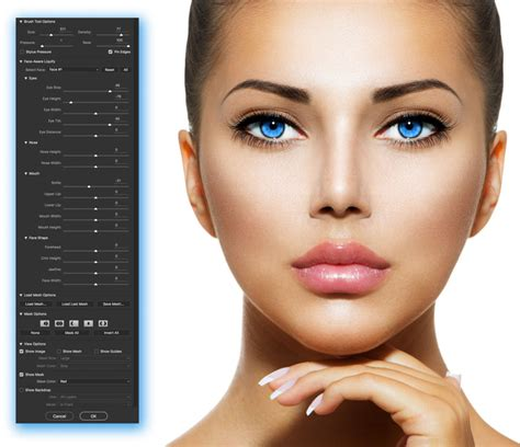 makeup psd templates for photoshop photoshop liquify filter tips and tricks