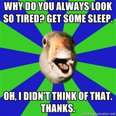 Narcolepsy Meme - 1000 images about fibro humor on pinterest can t sleep