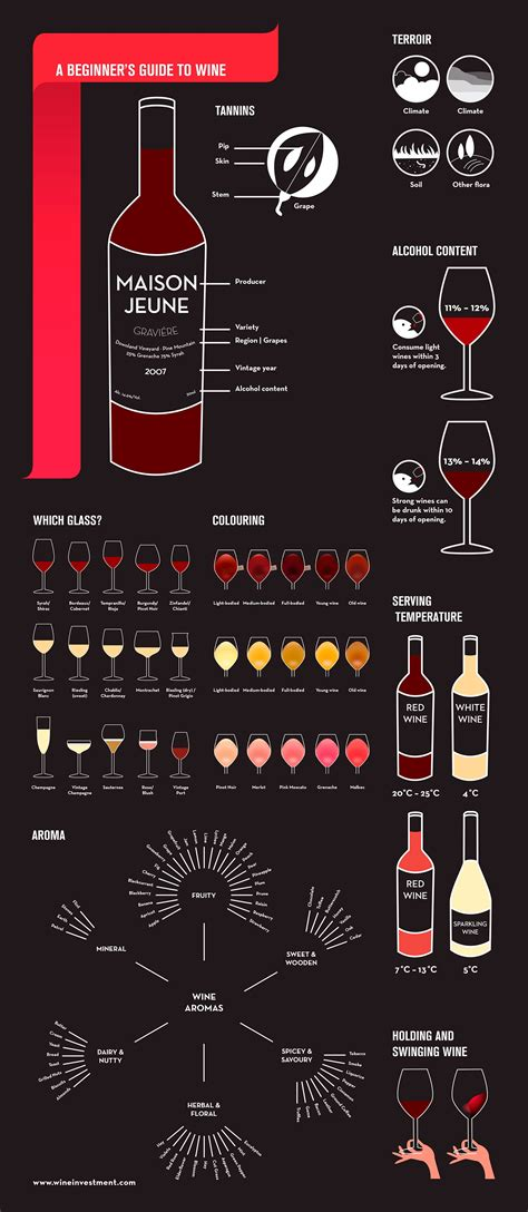 a beginner s guide to wine