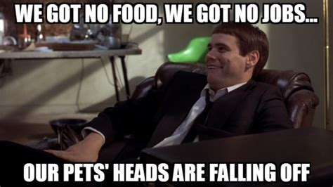 dumb and dumber on quot 9 dumb and dumber quotes not to live your by 183 the